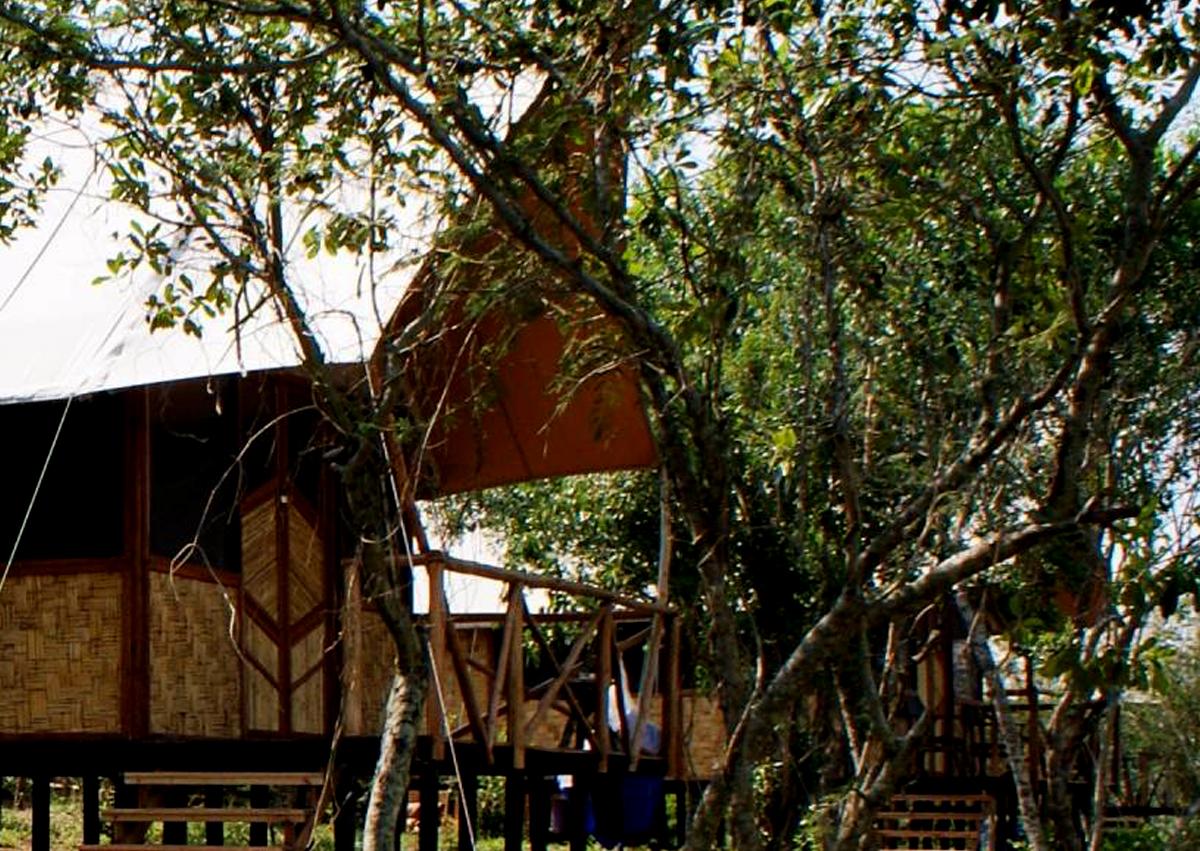 Bushlodge camp
