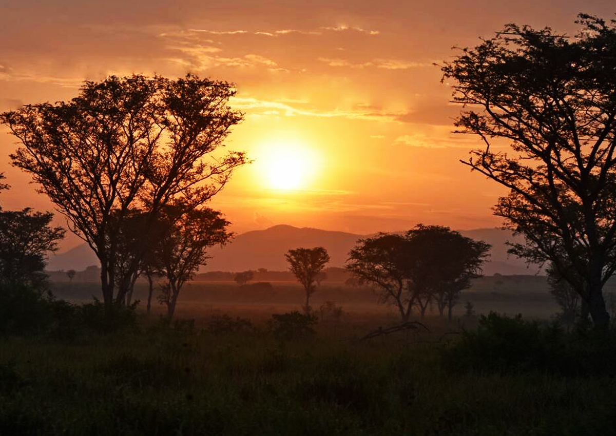 Sunset i Queen Elizabeth national park - Get to African Wildlife