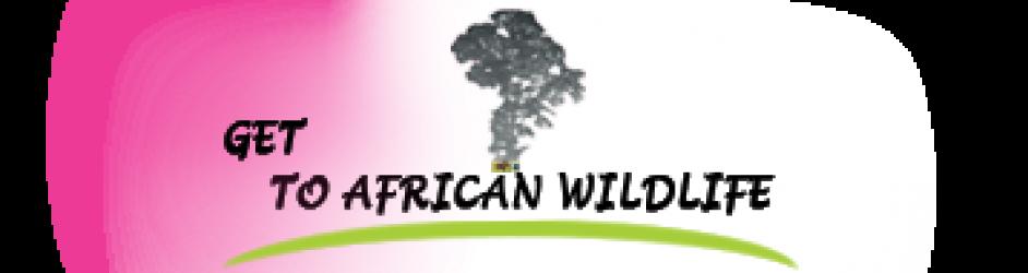 Get to African Wildlife safaris